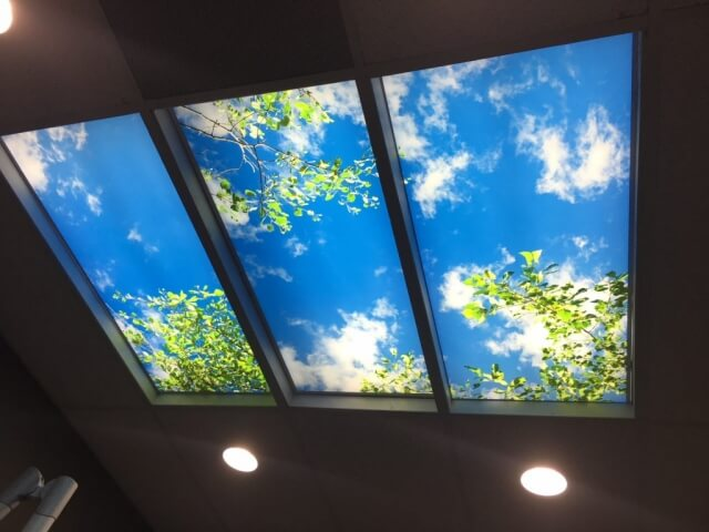 mebane-dental-office-ceiling-scenes